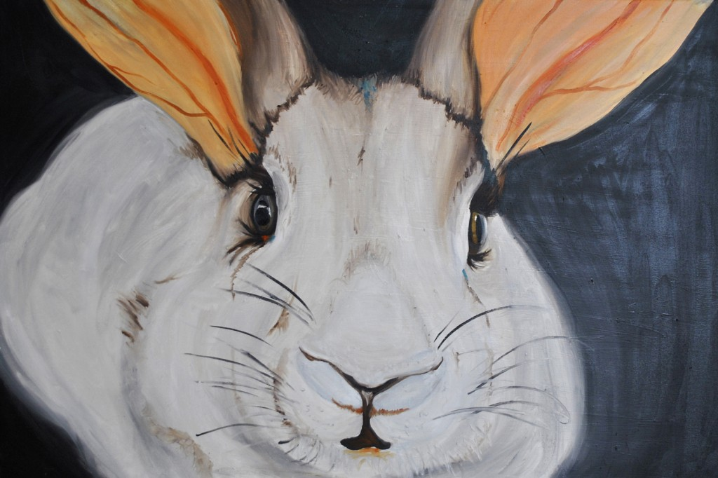 Rabbit from The Vegan Project, 2014 Rita Bolla