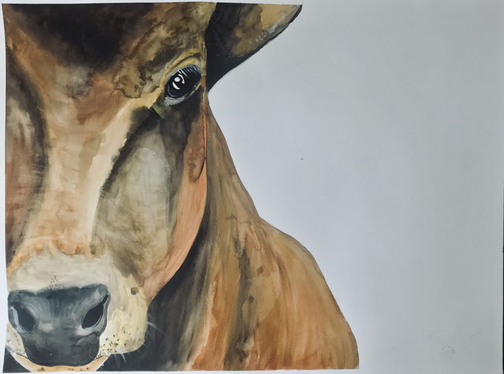 Calf from The Vegan Project, 2019 Rita Bolla