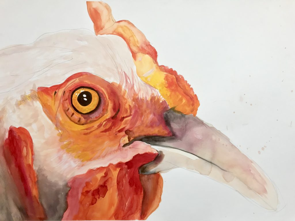 Chicken from The Vegan Project, 2014 Rita Bolla